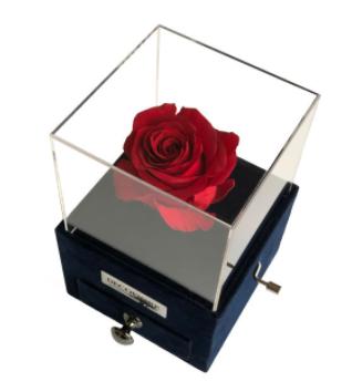 جعبه موزیکال کشودار رز جاودان دکوفیوره طرح ملودی عاشقانه