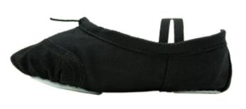کفش مخصوص باله زنانه کد 460601