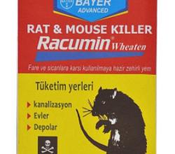 Photo of خرید انلاین مرگ موش ارزان قیمت و با کیفیت