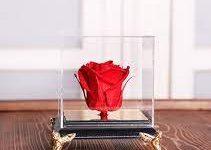 Photo of درست کردن گل رز جاودان با کمترین هزینه در منزل