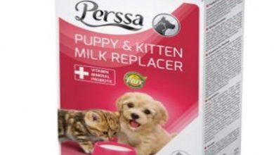 Photo of خرید بهترین مارک شیرخشک سگ ارزان قیمت + 7 مدل با کیفیت
